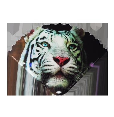 eventail-tigre