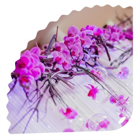 Éventail Bulles Florales